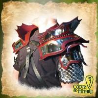 Épaulettes pour GN du Roi Dragon